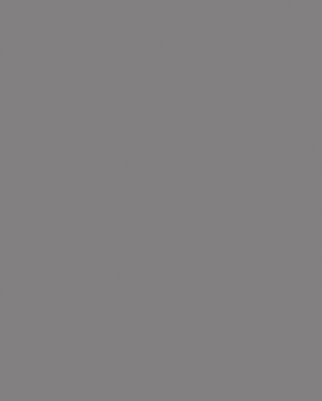 0171 Slate Grey (мостра ЛПДЧ)