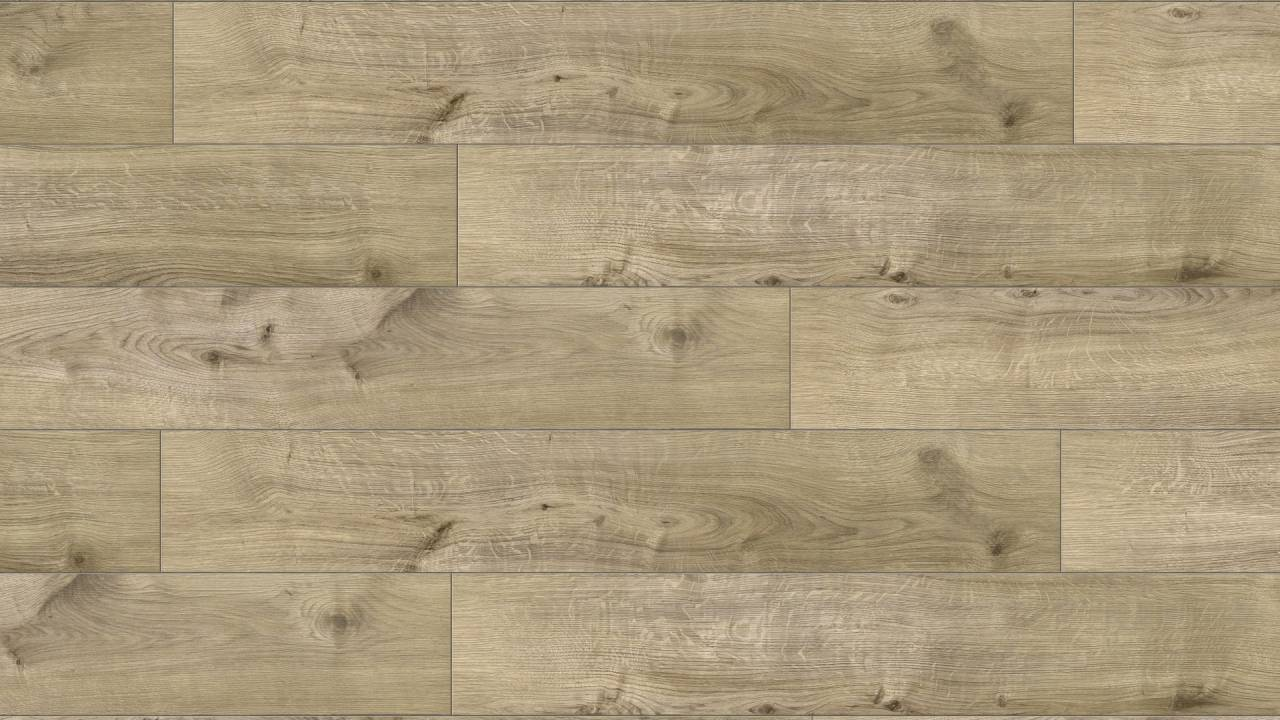Z199 Fraser Oak (sample)