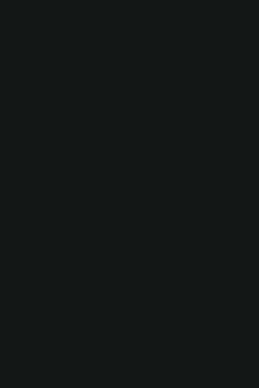 0190 Black MG (мостра)