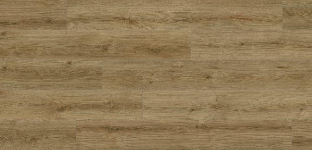 K4421 Oak Evoke Trend