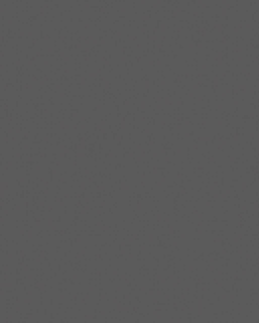 0162 Graphite Grey (мостра ЛПДЧ)