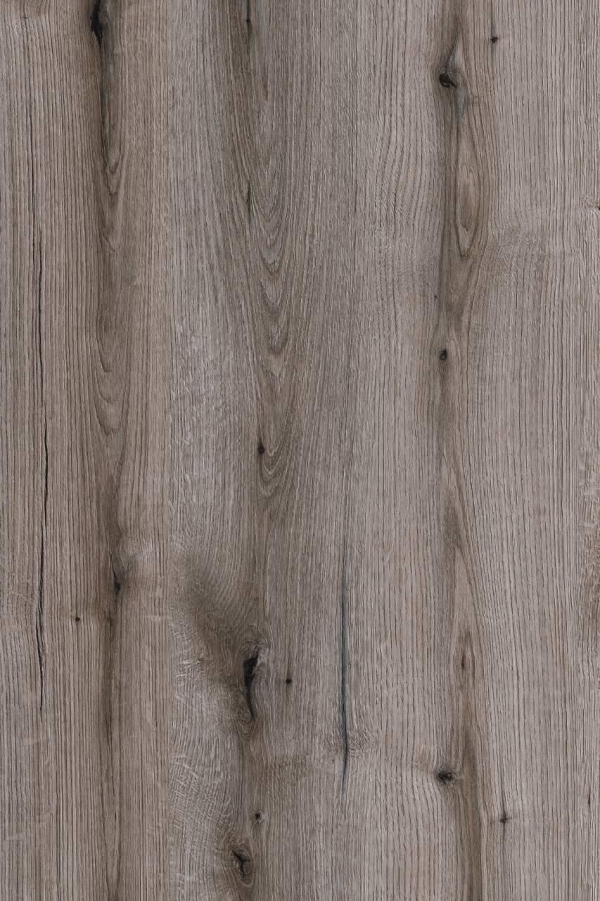 K366 Fossil Evoke Oak (MF PB sample)