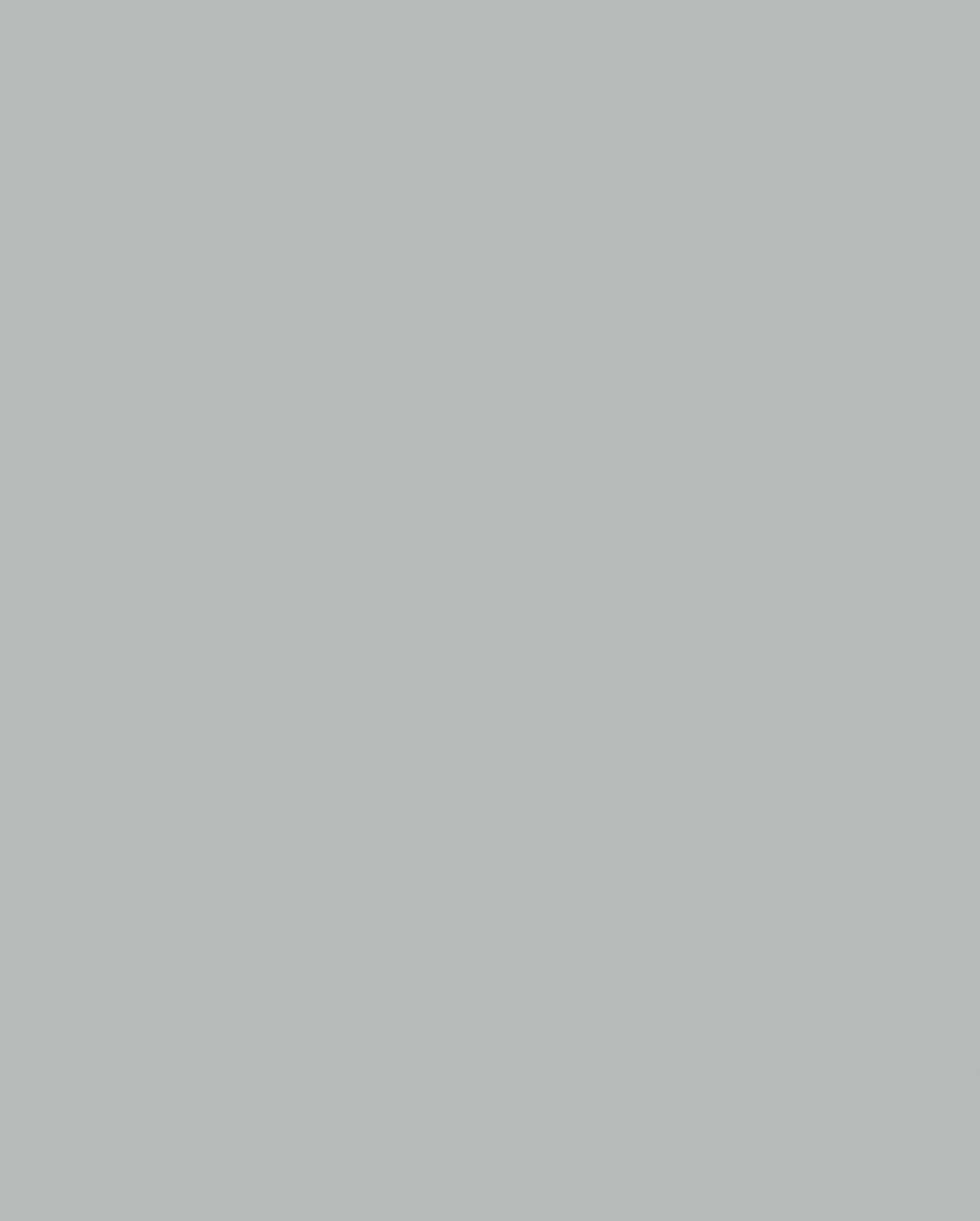 1700 Steel Grey (MF PB sample)