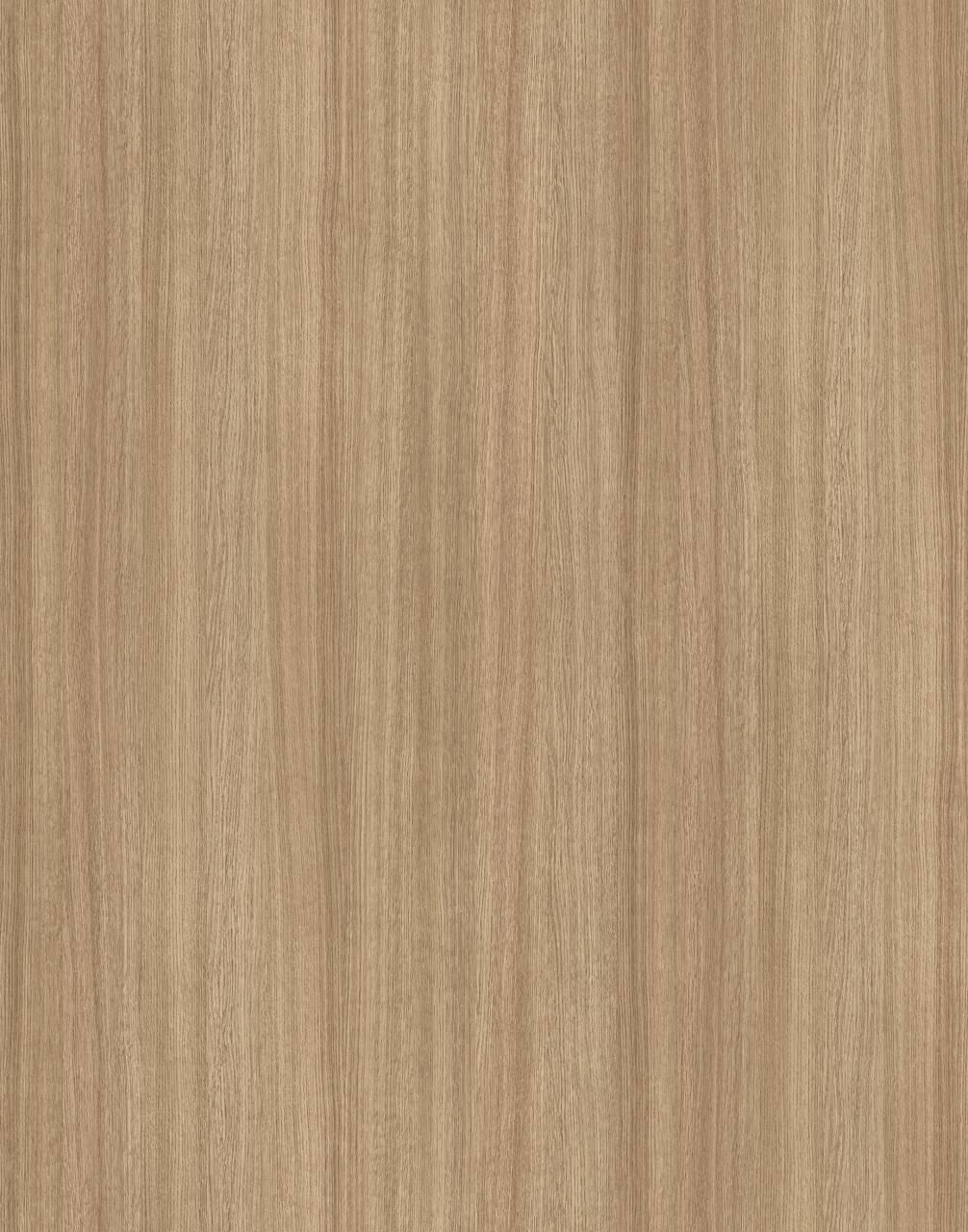 5501 Slavonia Oak (MF PB sample)