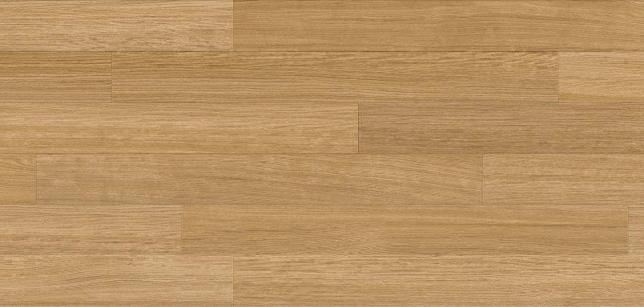 EI0AB0 Oak Urban (sample)