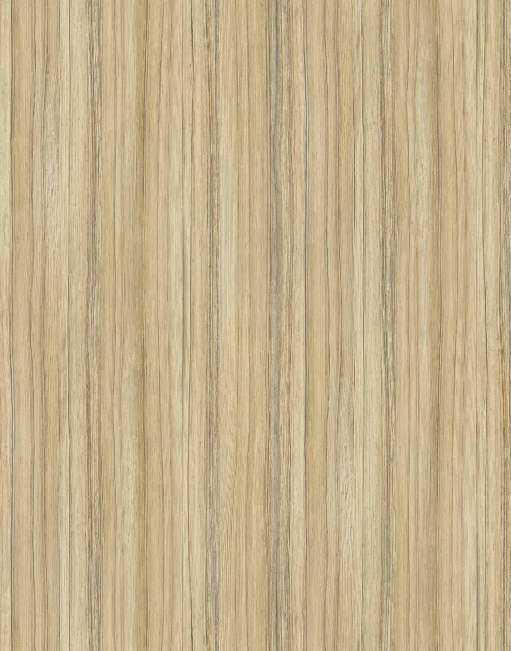 8995 Coco Bolo (MF PB sample)