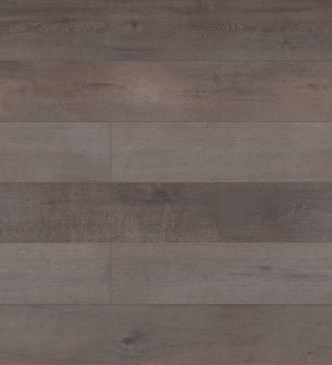 K228 Anvil Oak (sample)